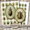 Ovális képek ékszerkészítéshez - bogarak , Papír, Bogarak zöld háttéren - vintage illusztrációk - nyomtatható ovális képek  2 + 1 Boltnyitási AKCIÓ ! ..., Alkotók boltja