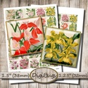Orchideák - digitális képkollázs, Papír, Vintage orchidea-illusztrációk - nyomtatható, négyzet alakú képek  Min. 5 termék rendelésekor 400 Ft..., Alkotók boltja