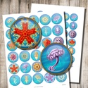 A tenger mélyén - digitális képkollázs , Papír, Tengeri élőlények - vintage illusztrációk - nyomtatható, kör alakú képek  Min. 5 termék rendelésekor..., Alkotók boltja