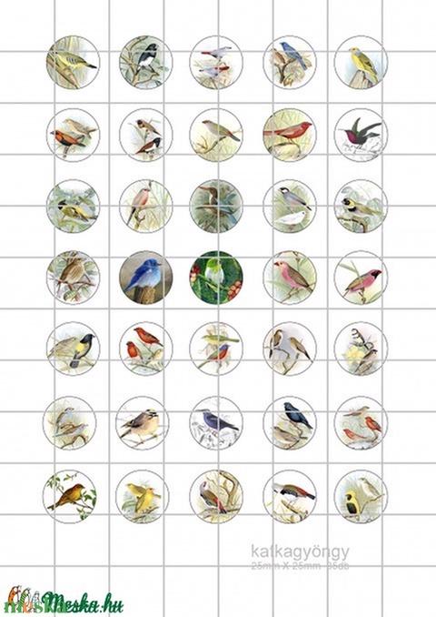 MADARAK Kör alakú digitális montázs 25 x 25mm 35db, Gyöngy, ékszerkellék, Papír, Alkotók boltja