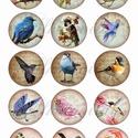 Vintage madaras ív textilre vasalható nyomaton A4 méretben, Papír, Dekorációs kellékek, Mindenmás, A textilre vasalható íveknél fontos tudni, hogy kimondottan műszálas, vagy műszálat nagy mértékben ..., Alkotók boltja
