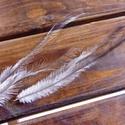 Emu toll ?farok? - 6 db, Egzotikus toll egy futómadártól, melynek különlegessége, hogy egy tokból két tollszár nő. ..., Alkotók boltja