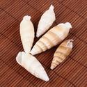 Fúrt kagyló/csiga (47. minta/6 db), Vegyes alapanyag, Mindenmás,  Fúrt kagyló/csiga (47. minta) - csigaház  Az ékszerkészítés dekoratív kiegészítője lehet a termész..., Alkotók boltja