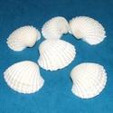 Natúr kagyló/csiga (2. minta/6 db) - fehér szívkagyló, Vegyes alapanyag,  Natúr kagyló/csiga (2. minta) - fehér szívkagyló - furat nélkül  Mérete: 4 - 6 cm  Az ár 6..., Alkotók boltja