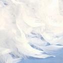 Dekorációs toll-107 (20 db) - fehér, Vegyes alapanyag, Mindenmás,  Dekorációs toll-107 - fehér  A tollak mérete: 6-10 cm A csomag tartalma 20 db madártoll. Az ár eg..., Alkotók boltja