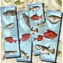 Nyomtatható halas könyvjelzők , Papír, Tengeri halak - nyomtatható könyvjelzők   ***  Mit kapsz, ha ezt a terméket vásárolod meg?  ***  -1..., Alkotók boltja