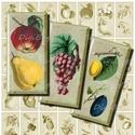 Gyümölcsök - dominó alakú nyomtatható képek , Papír, Vintage gyümölcsillusztrációk - nyomtatható, dominó méretű képek  ***  Mit kapsz, ha ezt a terméket ..., Alkotók boltja