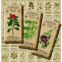 Gyógynövények és fűszernövények - nyomtatható dominó alakú képek, Papír, Gyógynövények és fűszernövények - vintage illusztrációk - nyomtatható, dominó méretű képek  *** Mit ..., Alkotók boltja
