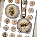 Pókok, rákok, skorpiók - nyomtatható képkollázs ékszekészítéshez, Papír, Nyomtatható mintaív kör alakú mintákkal, üveglencsés ékszerek készítéséhez.   -Kiváló minőségű, éle..., Alkotók boltja