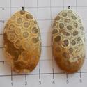 Natural Teleflora Fossil Coral 7, Gyöngy, ékszerkellék, Cabochon, AAA+++ minőségű Corall fossilia féldrágakövek! Mind gyönyörű mintás, szép fényesre csisz..., Alkotók boltja