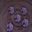 5 db Marilyn Monroe cabochon, Gyöngy, ékszerkellék, Cabochon, Ékszerkészítés, Ovális,üveg, 13x18 mm-es cabochon ékszerkészítéshez, dekorációhoz, kreatíviskodáshoz. Az ár 5 darab..., Alkotók boltja