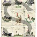 Vintage sorozat: Csirkefarm 1., Papír, Decoupage papír, Decoupage, szalvétatechnika, Decoupage minták, A 4-s méretű rizsnyomat, vékony 20 gr-s rizspapíron, découpage technikához. Az eredeti nyomatot víz..., Alkotók boltja